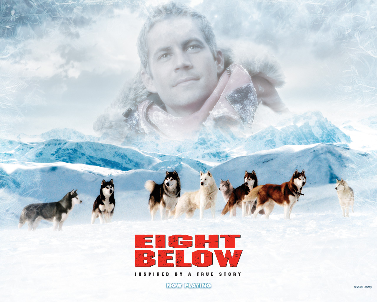 Eight Below-wallapper