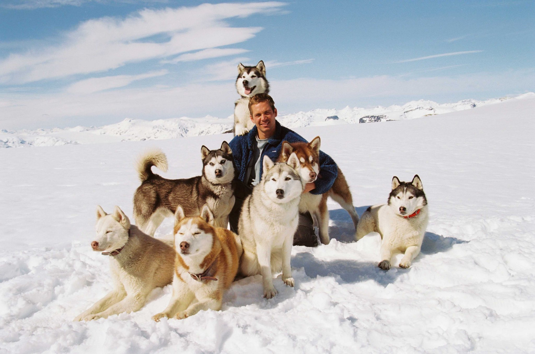 Eight Below HD