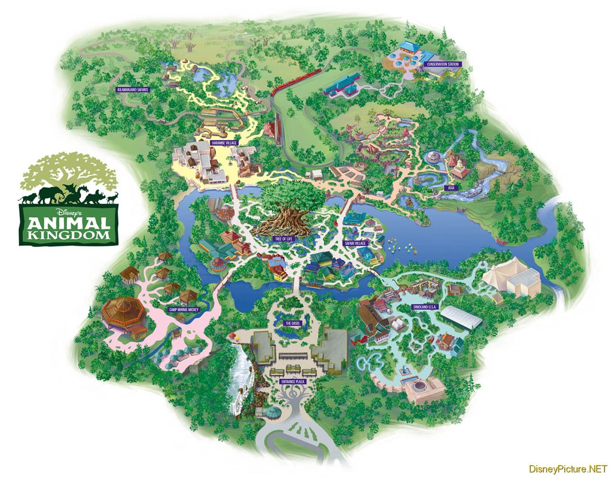 Animal Kingdom Park map