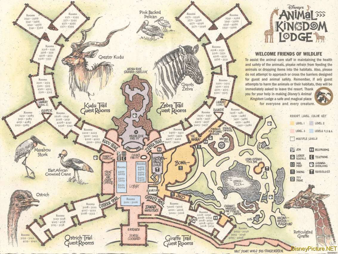 Animal Kingdom Lodge map