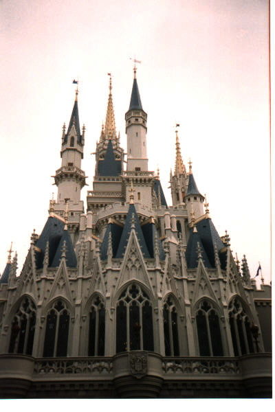 disney castle rear view