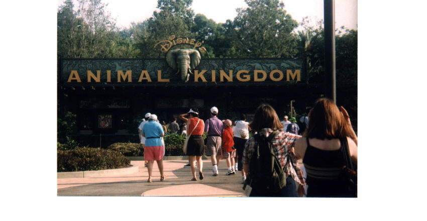 disney Animal Kingdom Entrance