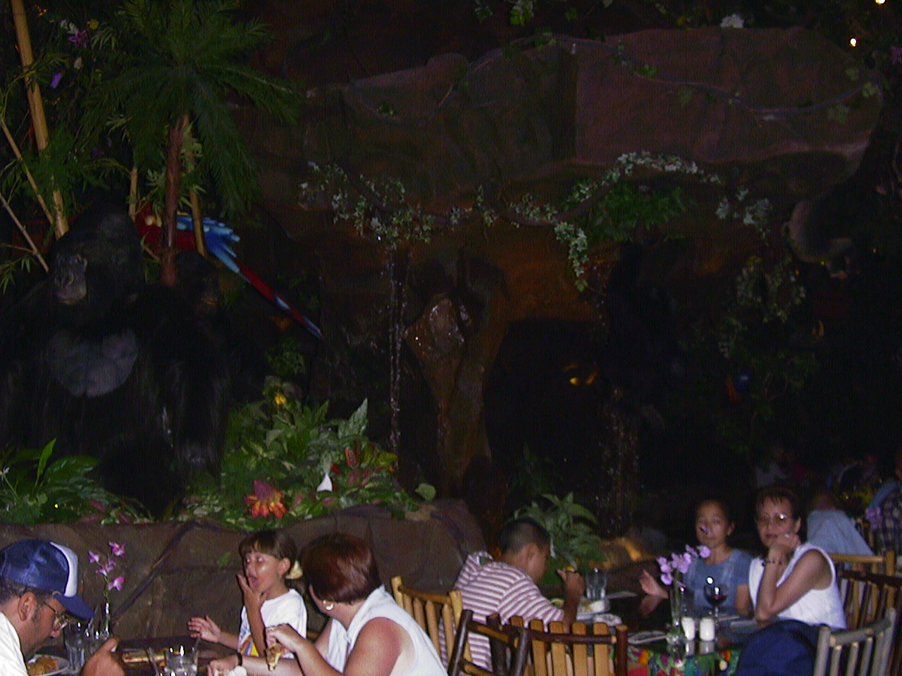 disney rainforest cafe