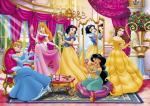 Disney Princess home