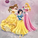 Disney Princess cover